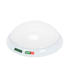 Emergency Ceiling Light-2G-3W