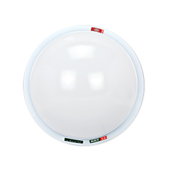 Emergency Ceiling Light-2G