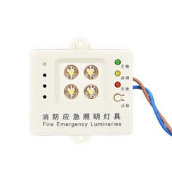 Emergency Ceiling Light-1409
