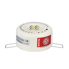 Emergency Ceiling Light1410