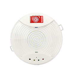 Emergency Ceiling Light-1411